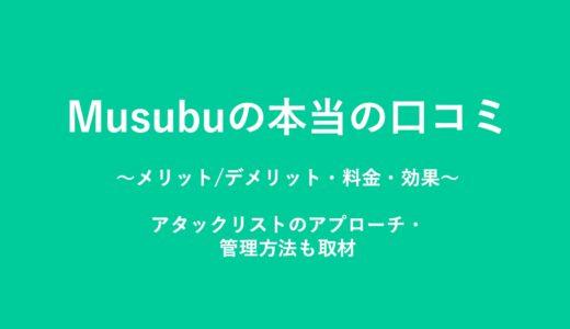 Musubuの本当の口コミ(評判)。メリット・料金・効果の実態調査。アタックリストのアプローチ・管理方法も取材